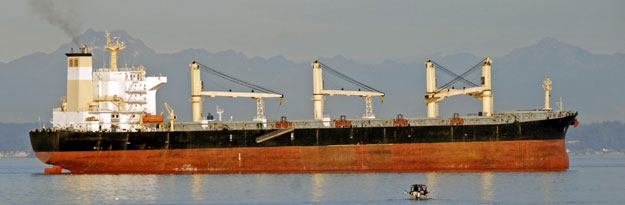 Supramax ship for transportation Mesquite hard wood chips